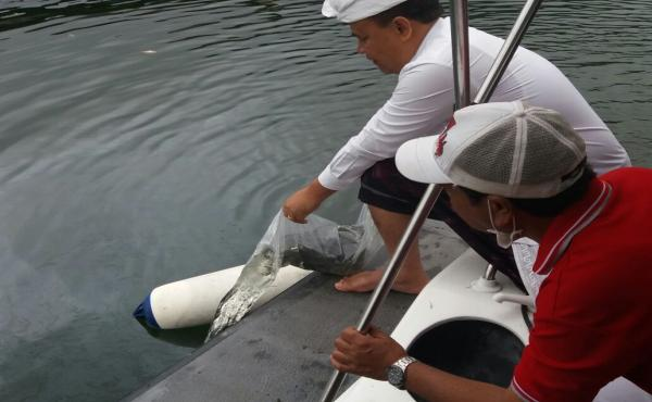 Restocking-at-Lake-Batur.html
